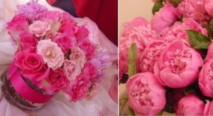 limelightfloraldesignpinks